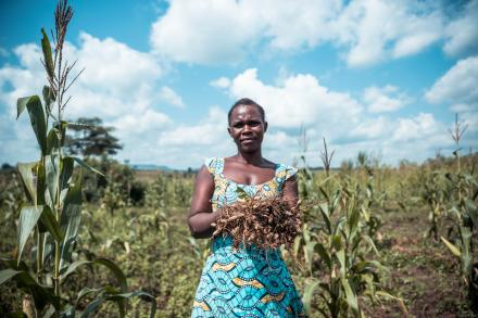 Woman standing in a field in Uganda holding peanuts that she has harvested